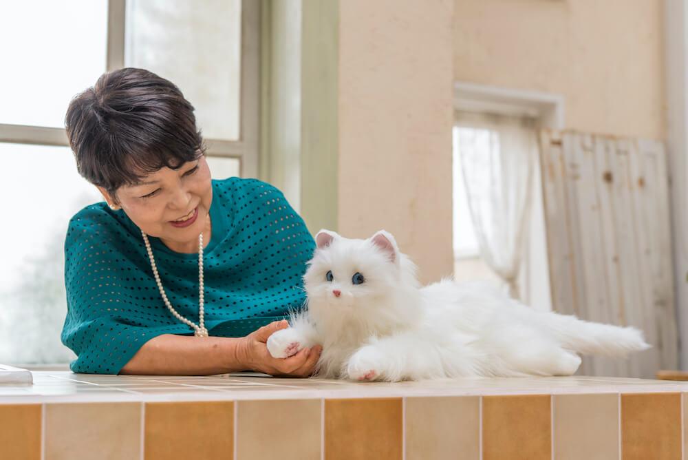 猫型ペットロボット「しっぽふりふり あまえんぼうねこちゃん」を撫でる様子