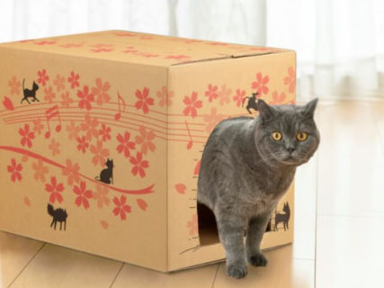 カインズの猫キャンペーン「にゃおにゃお2020」が始まるニャ!限定&お得なグッズも登場