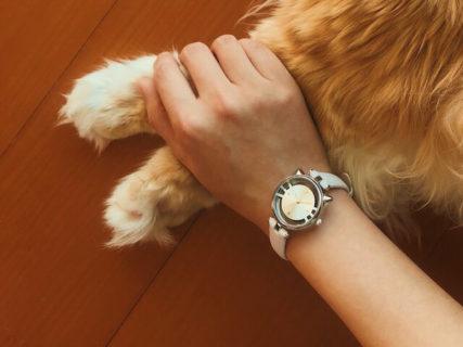 ネコ耳とヒゲがとってもキュート♪ 猫好きな女性に喜ばれそうなスケルトン腕時計が登場