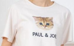 猫のTシャツやパジャマを着てリラックス♪ ポール&ジョーから部屋着の新シリーズが誕生