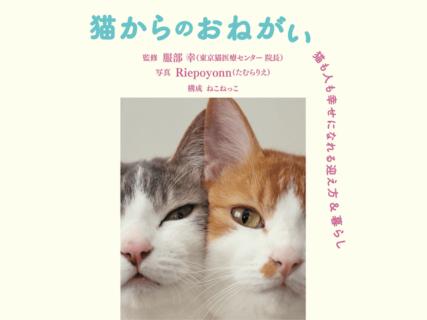 猫を取り巻く環境の変化にどう対応すべき?令和版のねこ生活ガイドブック「猫からのおねがい」