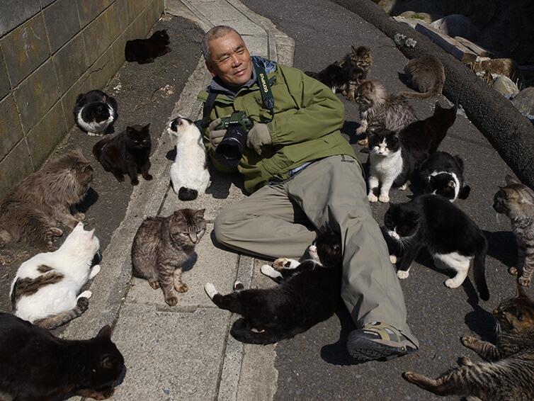 撮影中にたくさんの猫に囲まれてるカメラを手にした岩合光昭さん