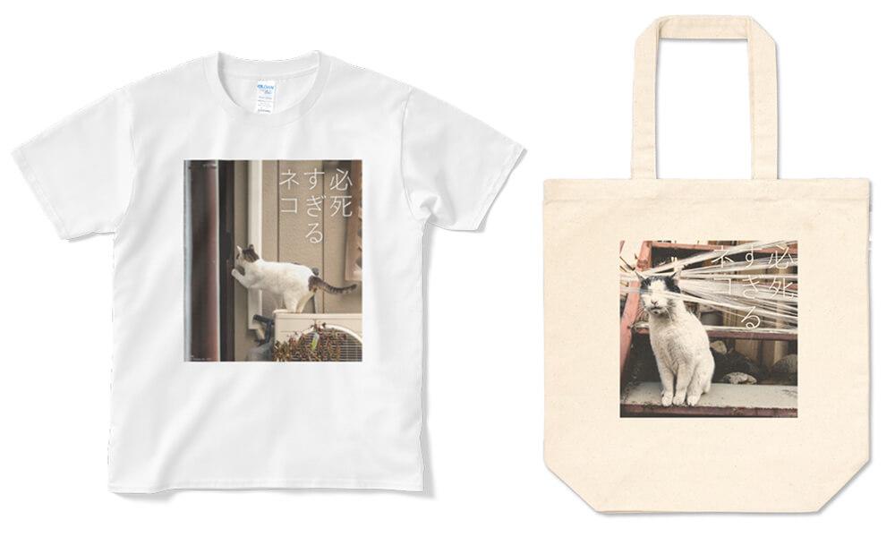 沖昌之さんの写真集「必死すぎるネコ」をグッズ化した製品イメージ