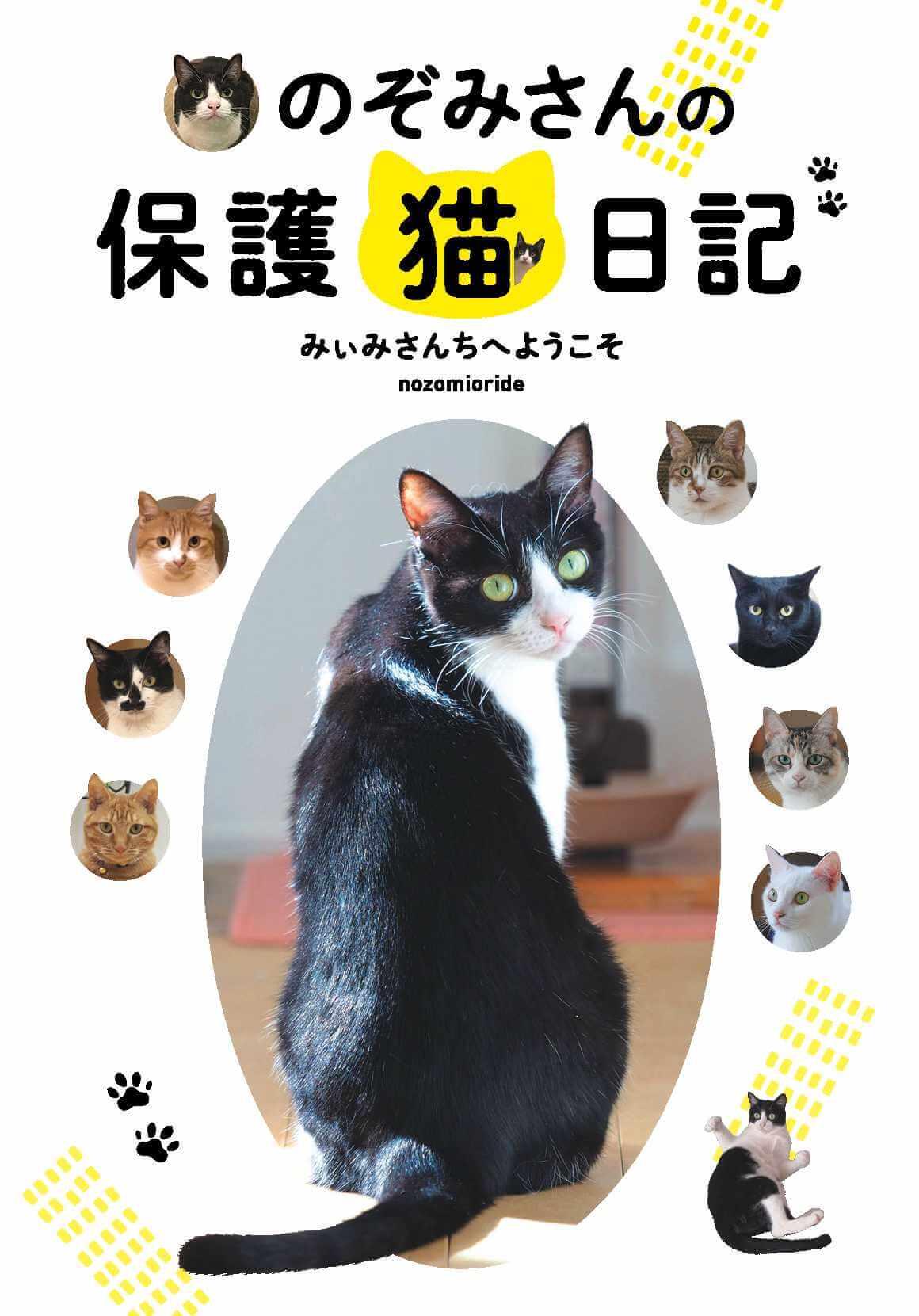 書籍「のぞみさんの保護猫日記」の表紙