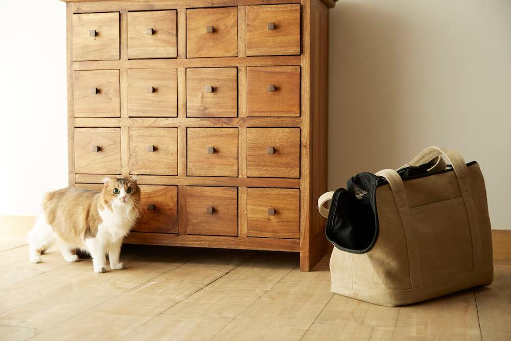 インテリア性の高い「Neko Carry Bag(ネコキャリーバッグ)」を部屋に置いたイメージ