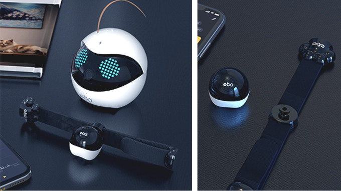 猫用のスマート首輪が付属する「Ebo Pro(イーボ プロ)」