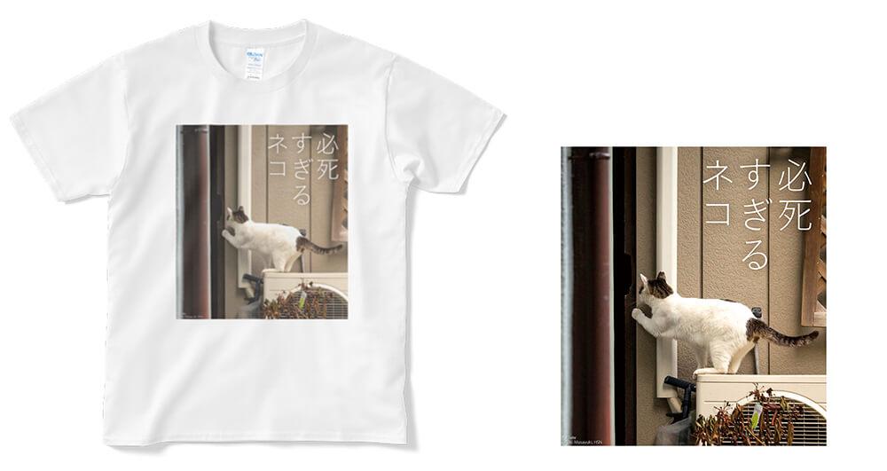 覗き見をする必死すぎるネコのTシャツ by 沖昌之