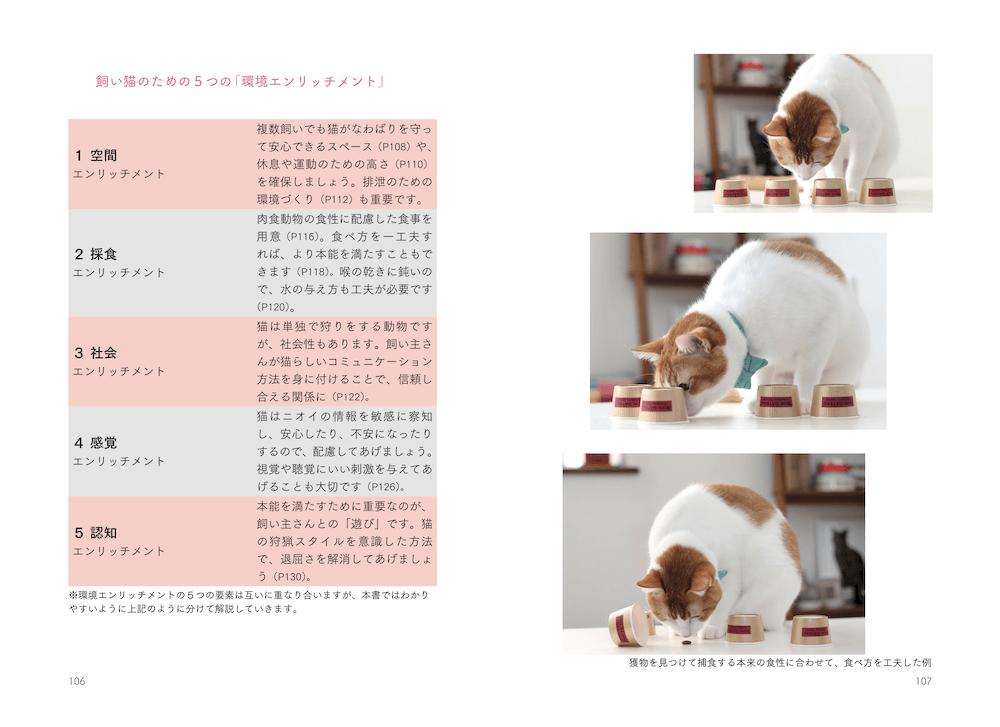 猫の環境エンリッチメント解説ページ (本文イメージ)