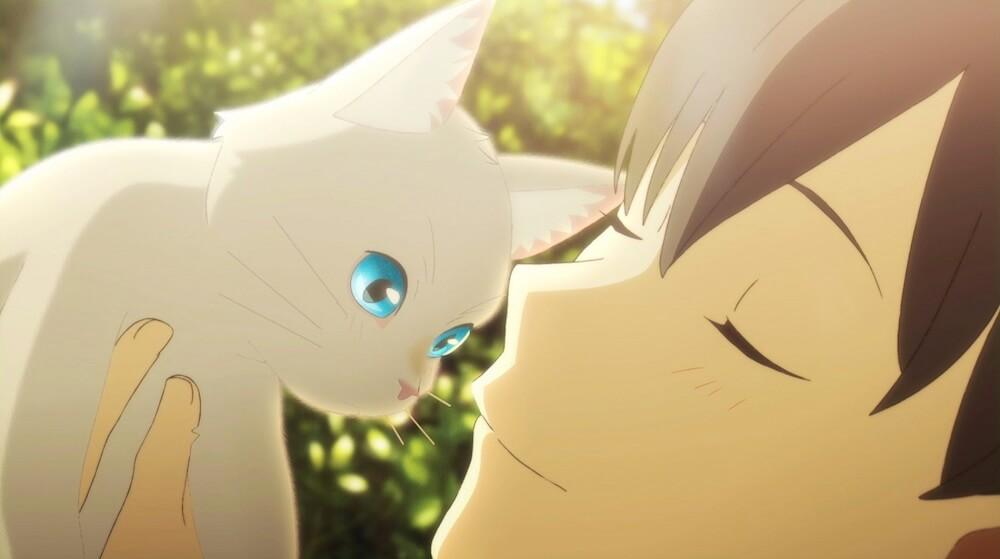 白猫の姿で日之出賢人に抱っこされるシーン by 映画「泣きたい私は猫をかぶる」のワンシーン