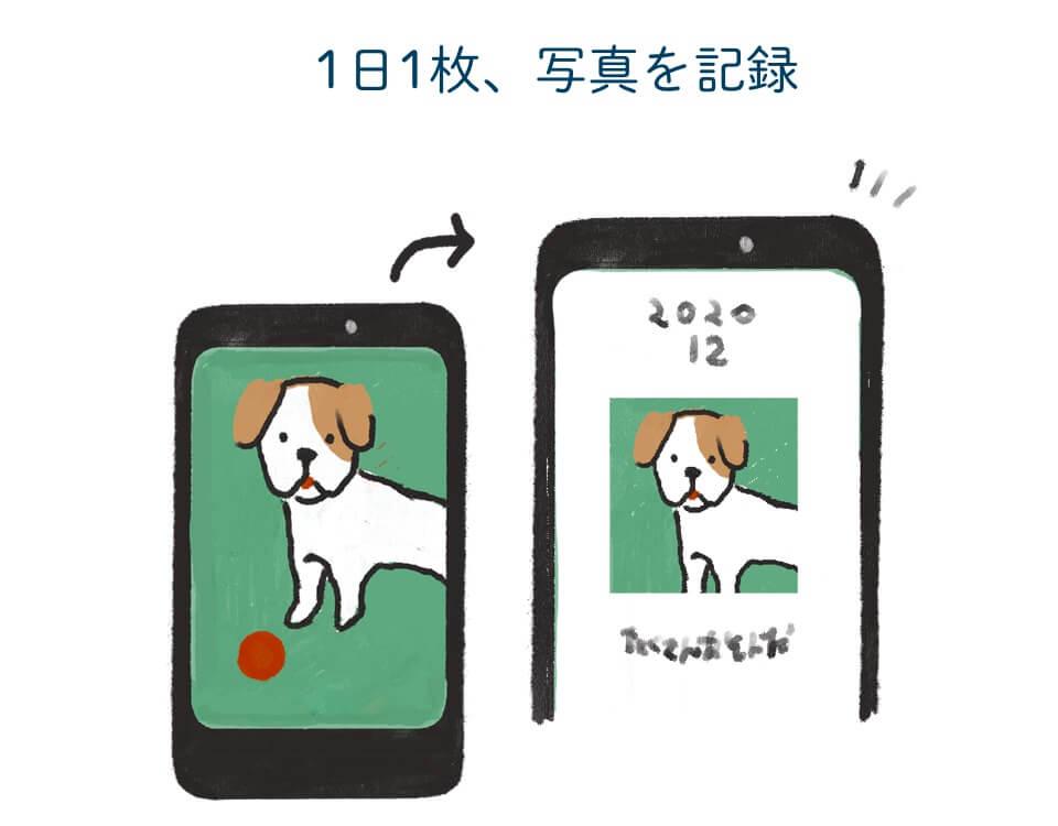 写真投稿イメージ「UCHINOKO Diary(ウチノコダイアリー)」