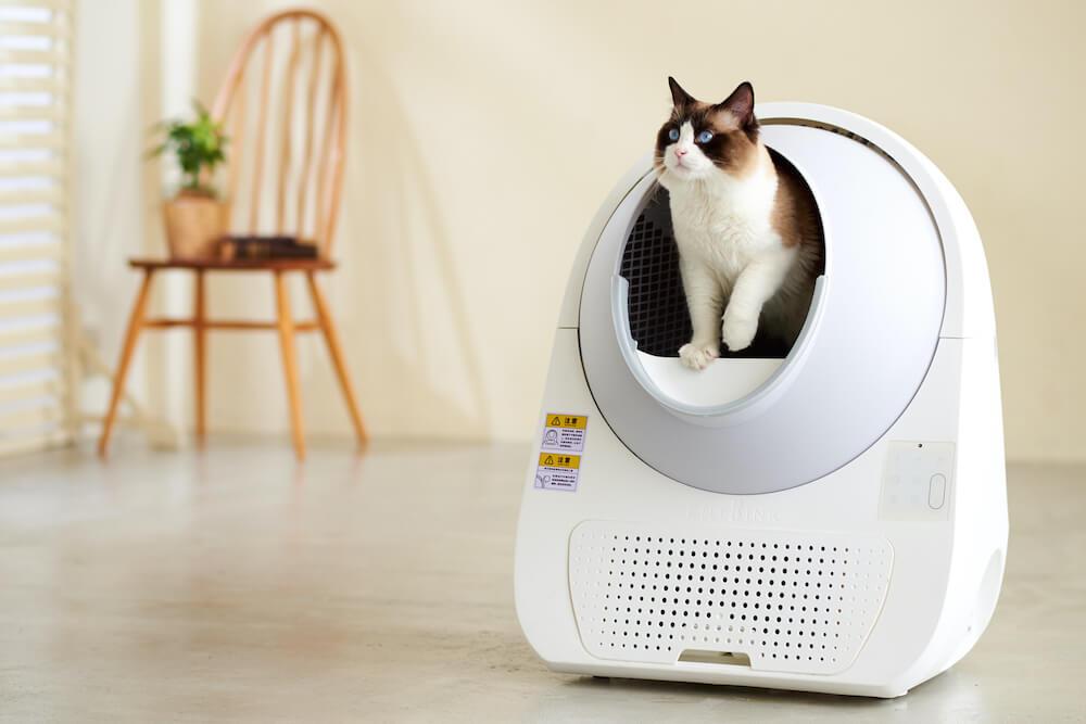 全自動猫トイレ CAT LINK(キャットリンク)から出てくる猫、製品使用イメージ