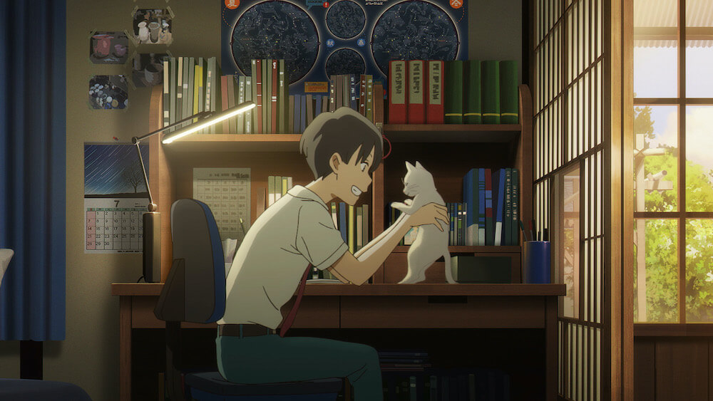 ムゲこと笹木美代が白猫に変身して日之出賢人の家に遊びにきたシーン by 映画「泣きたい私は猫をかぶる」のワンシーン