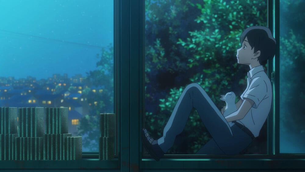 猫に悩みを打ち明ける日之出賢人 by 映画「泣きたい私は猫をかぶる」のワンシーン