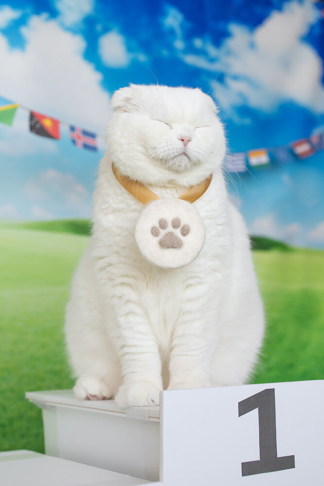 首からメダルをかけるネコ rojimanのネコ作品