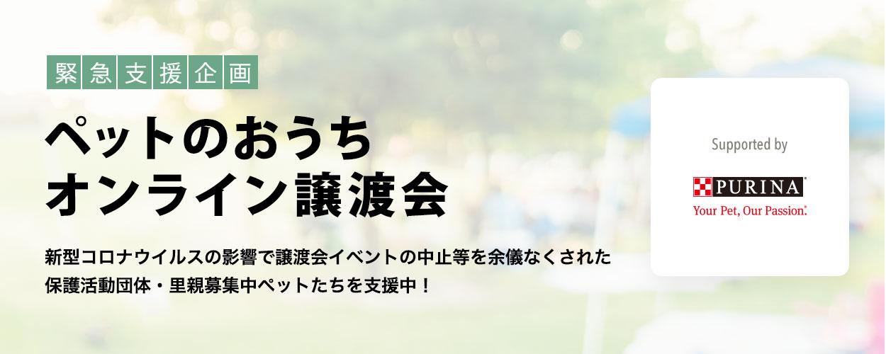 インターネット上の譲渡会場「ペットのおうち オンライン譲渡会 supported by PURINA」