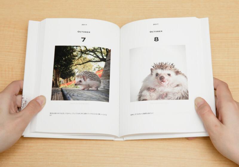 ペットのフォトアルバム「UCHINOKO Diary(ウチノコダイアリー)」の完成イメージ