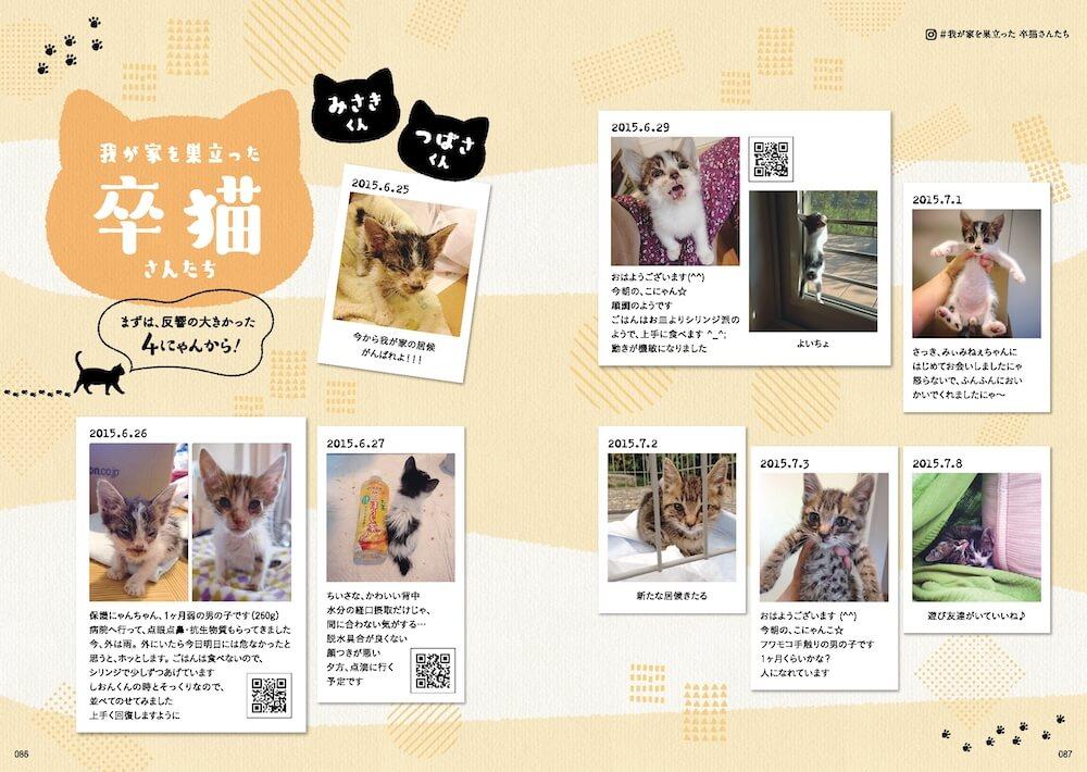 @nozomioridesさんの家を卒業した猫 by 「のぞみさんの保護猫日記」