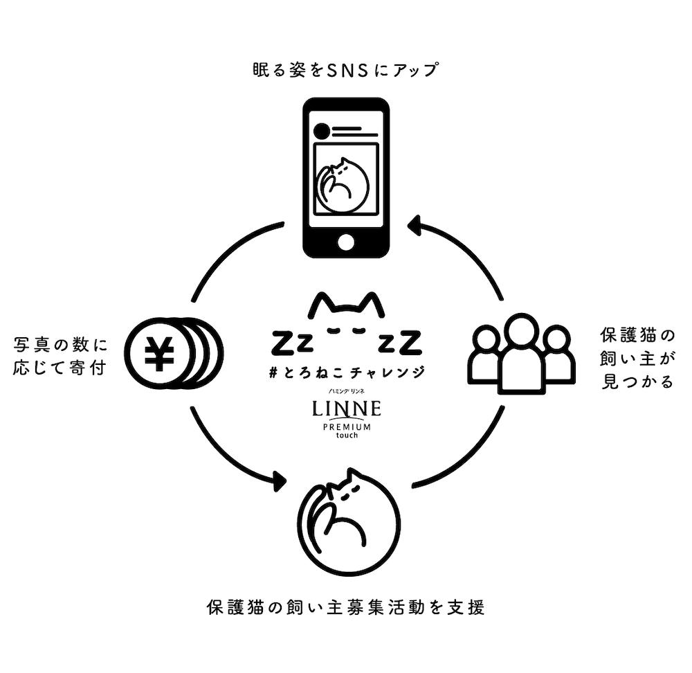 「#とろねこチャレンジ」のプロジェクトイメージ図