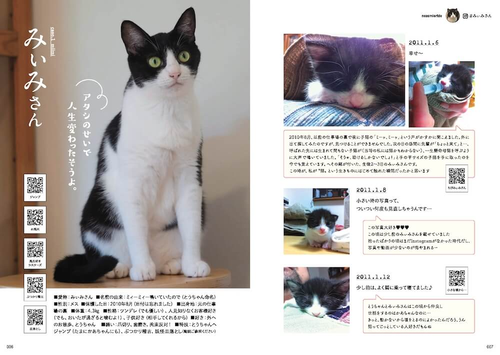 @nozomioridesさんの飼い猫「みぃみさん」の紹介ページ by 「のぞみさんの保護猫日記」