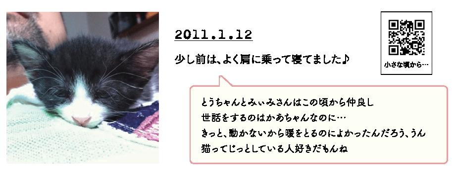 保護猫の動画を視聴できるQRコード付き by 「のぞみさんの保護猫日記」