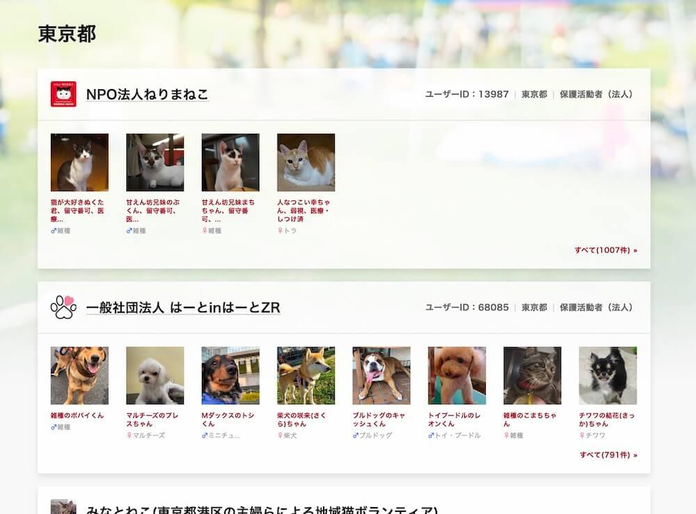 ペットのおうちオンライン譲渡会ページで、猫の里親募集情報を表示した画面イメージ