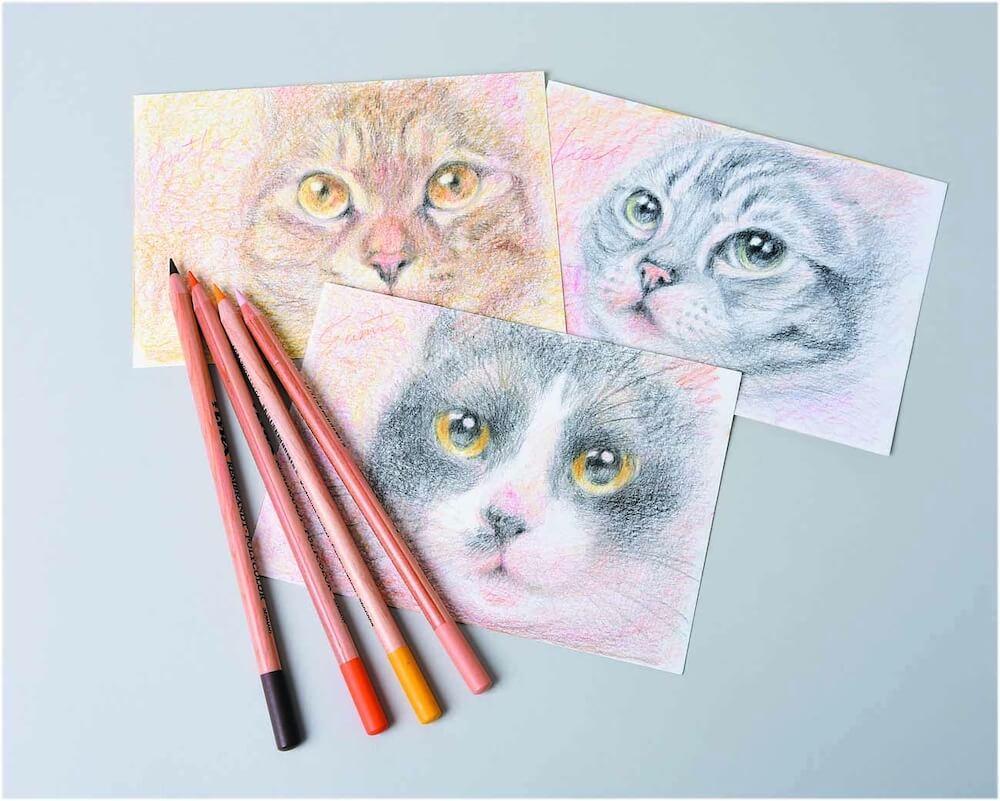 色鉛筆による猫の似顔絵イメージ by ポートレート作家niwa kasumi