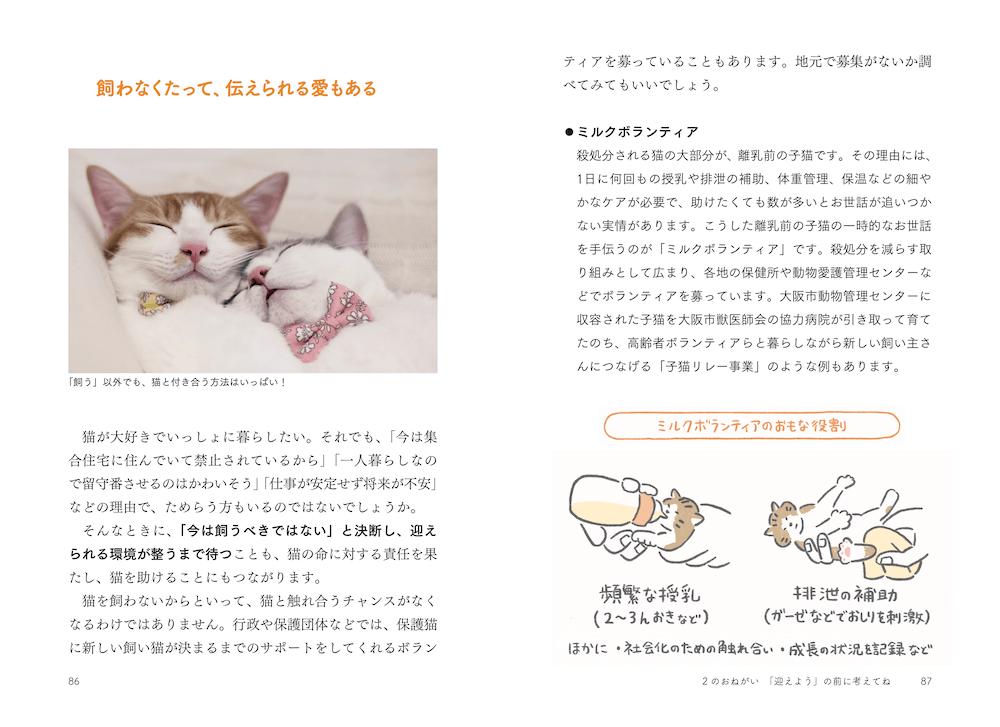 猫を飼えない時にできることを考えるページ (本文イメージ)