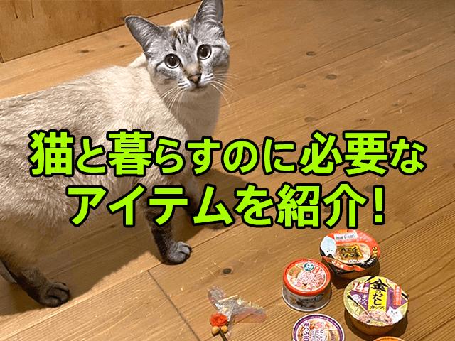 猫と暮らす基本アイテム編、猫を飼いたての方や飼いたい方に向けて、必要なグッズを具体的にご紹介