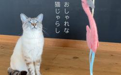 【レビュー動画】魚の形をした動くけりぐるみに、驚くほど猫が食いつきました!