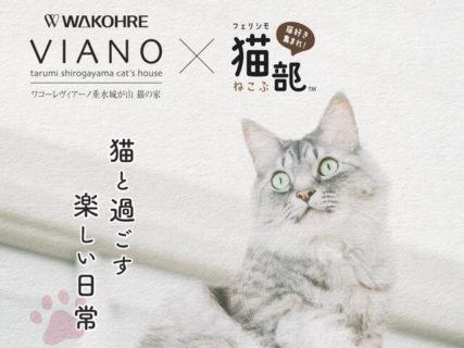 1部屋でもネコと快適に暮らしたい!賃貸住宅「猫の家」シリーズから単身世帯向けの物件が誕生