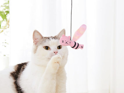 ゆるさ加減に猫も興味津々♪徳島の脱力系キャラ「ししゃもねこ」をモチーフにした猫用品が登場