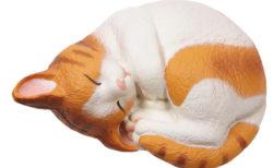 本物の猫にはない触感が病みつきニャ♪ 猫のスクイーズ「ウィーアーザキャット」からまるネコが登場