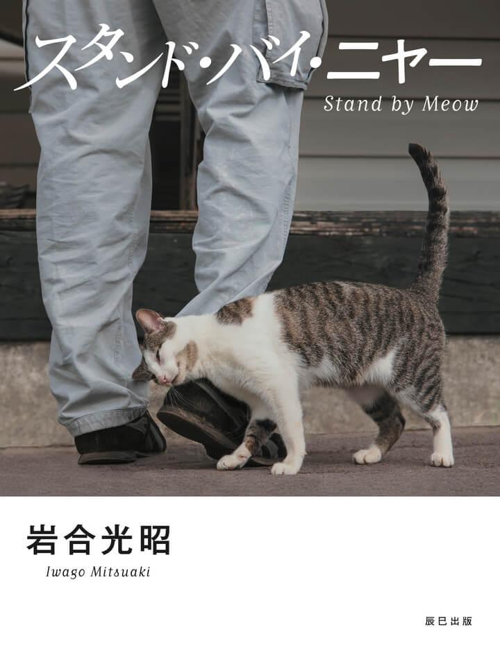 岩合光昭 写真集「スタンド・バイ・ニャー」の表紙イメージ
