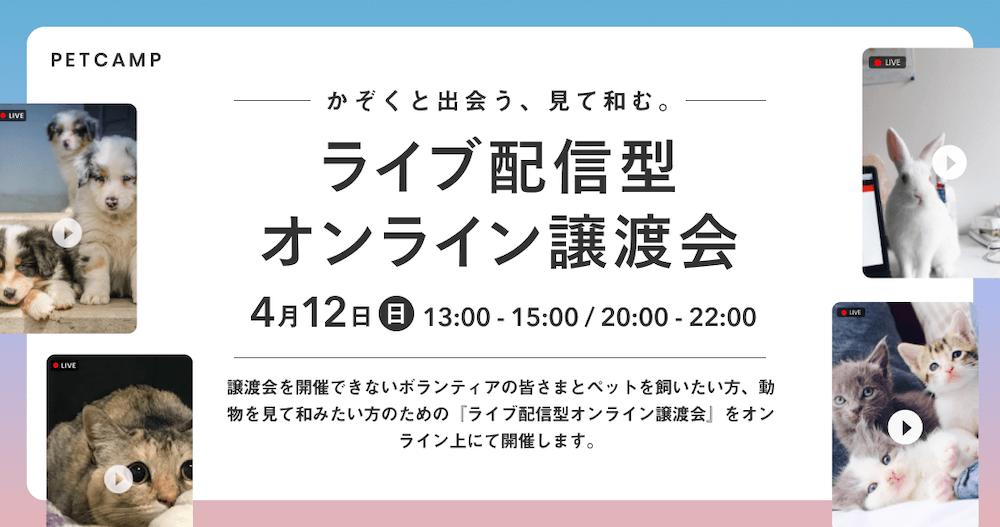 ライブ配信型のオンライン譲渡会 by ペットキャンプ