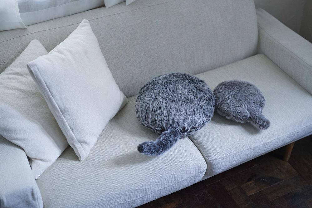 「Petit Qoobo(プチ・クーボ)」をソファの上に置いたイメージ