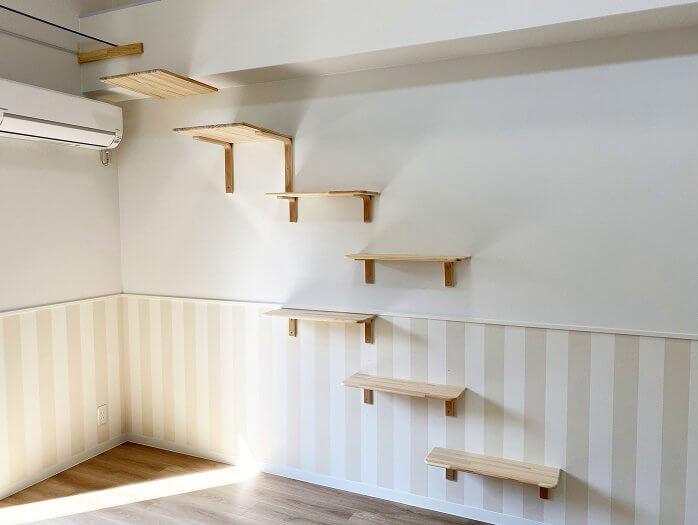 壁に張り巡らされているキャットステップ by 猫と暮らす賃貸住宅「ワコーレヴィアーノ垂水城が山 猫の家」