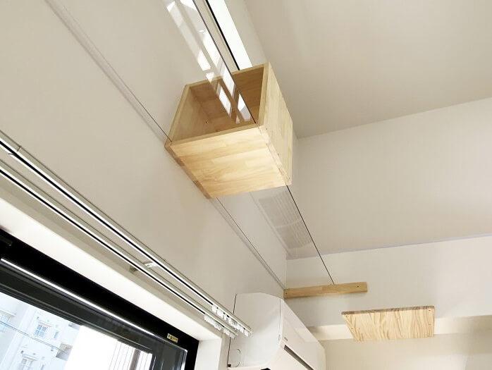 猫と暮らす賃貸住宅「ワコーレヴィアーノ垂水城が山 猫の家」の透明なアクリル板の猫用通路