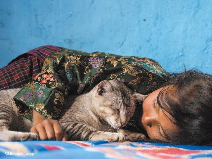 ブータン・イビサ村で暮らす少女と猫の写真 by 岩合光昭写真集「スタンド・バイ・ニャー」