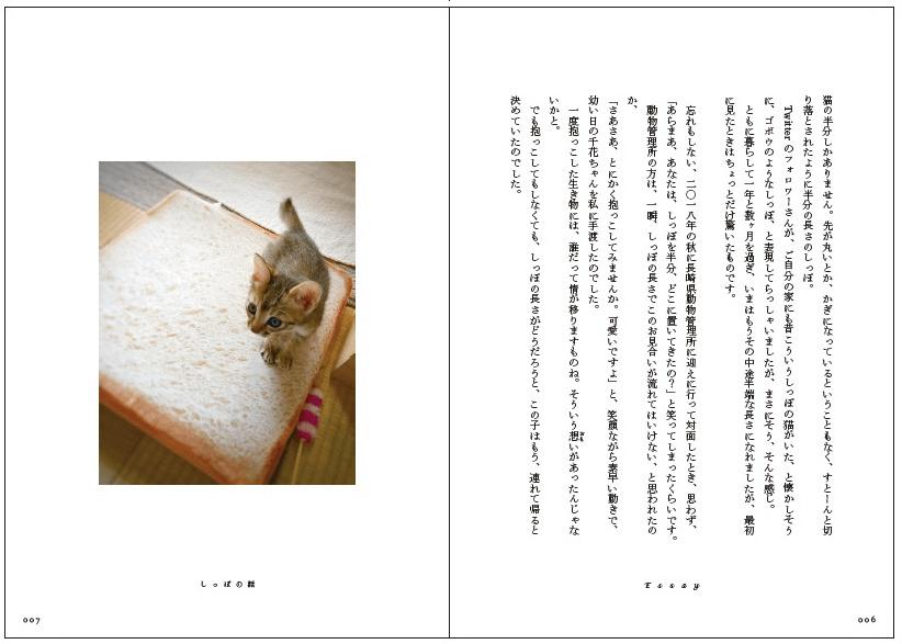 書籍「心にいつも猫をかかえて」の試し読み6〜7P
