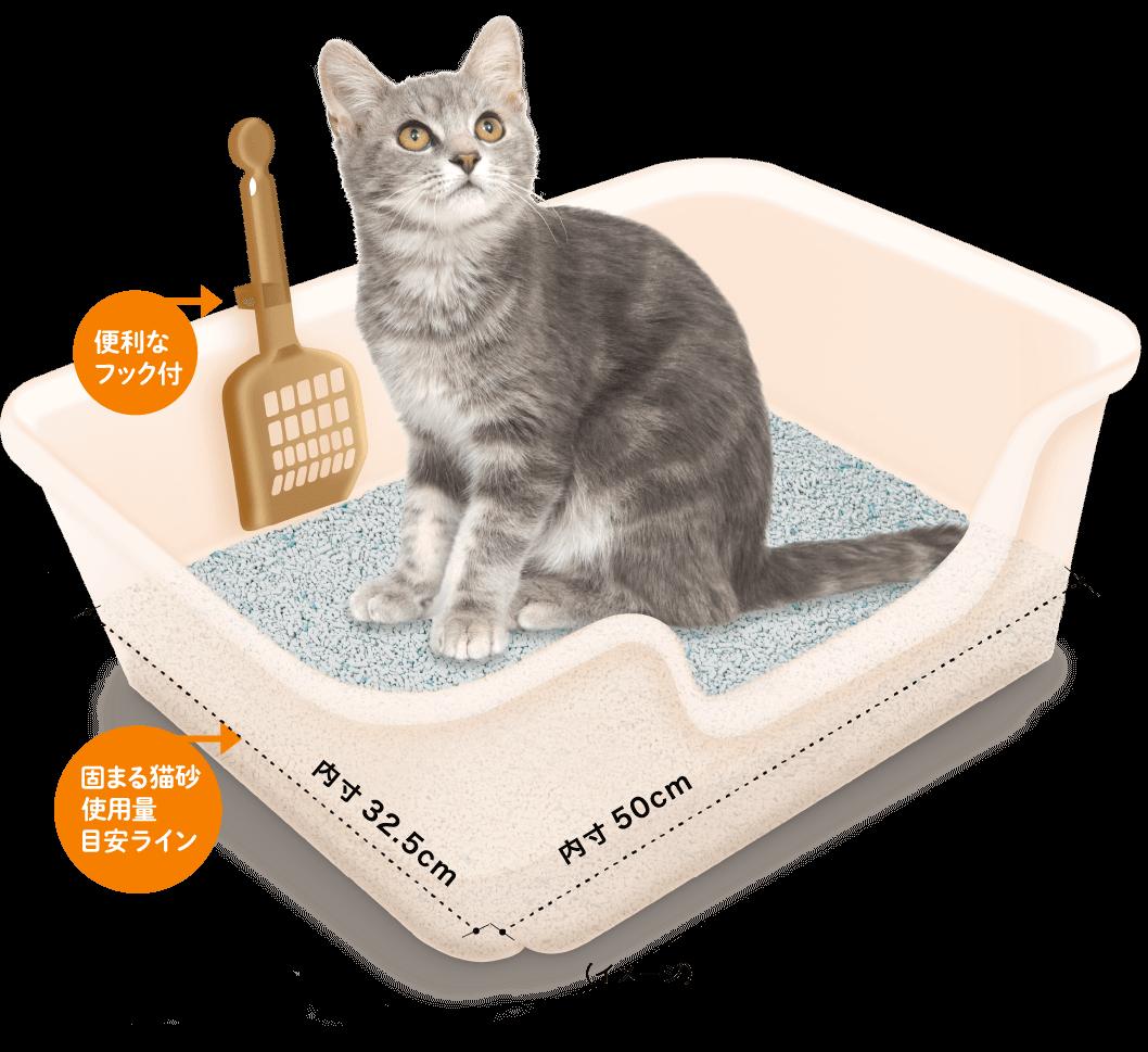 服部幸獣医師とライオンが共同開発した「獣医師開発 ニオイをとる砂専用 猫トイレ」製品使用イメージ