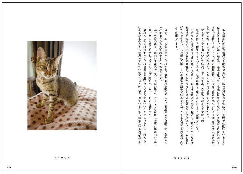 書籍「心にいつも猫をかかえて」の試し読み10〜11P