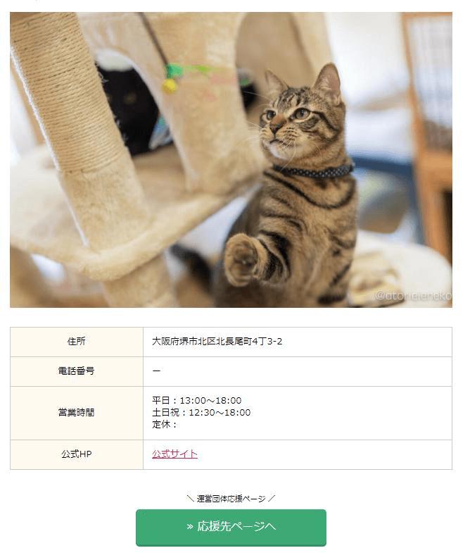 保護猫カフェの店舗概要イメージ by 保護猫カフェ応援特設サイト