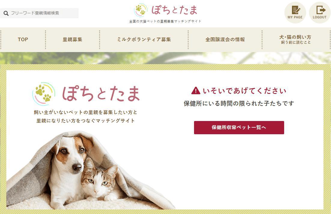 犬猫の里親マッチングサイト「ぽちとたま」
