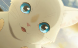 アニメ映画「泣きたい私は猫をかぶる」劇場公開を断念、Netflixで6/18より独占配信を開始
