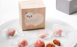 ホロホロ食感がたまらニャい♪ 猫のイラストパッケージも可愛い「ねこねこクッキー」が新発売
