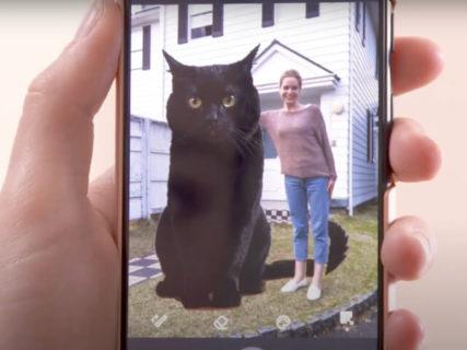 猫を抜き出して合成写真を作れるニャ!チェキのスマホ用プリンターがアプリに新機能を搭載