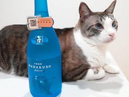 酒瓶が似合う猫は誰ですかニャ!?猫ラベルの芋焼酎がフォトコンテストの入賞作品を発表