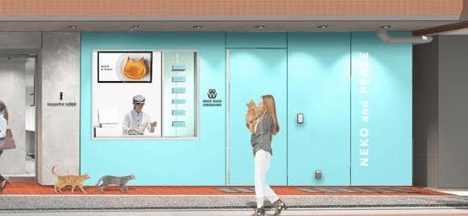 猫型チーズケーキ専門店「ねこねこチーズケーキ」自由が丘店の外観イメージ