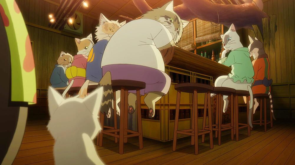 映画「泣きたい私は猫をかぶる」に登場する猫住人の太郎とハジメ