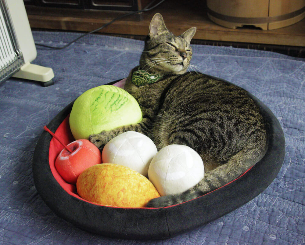 あんみつをモチーフにした猫用ベッドで寝転ぶキジトラ猫